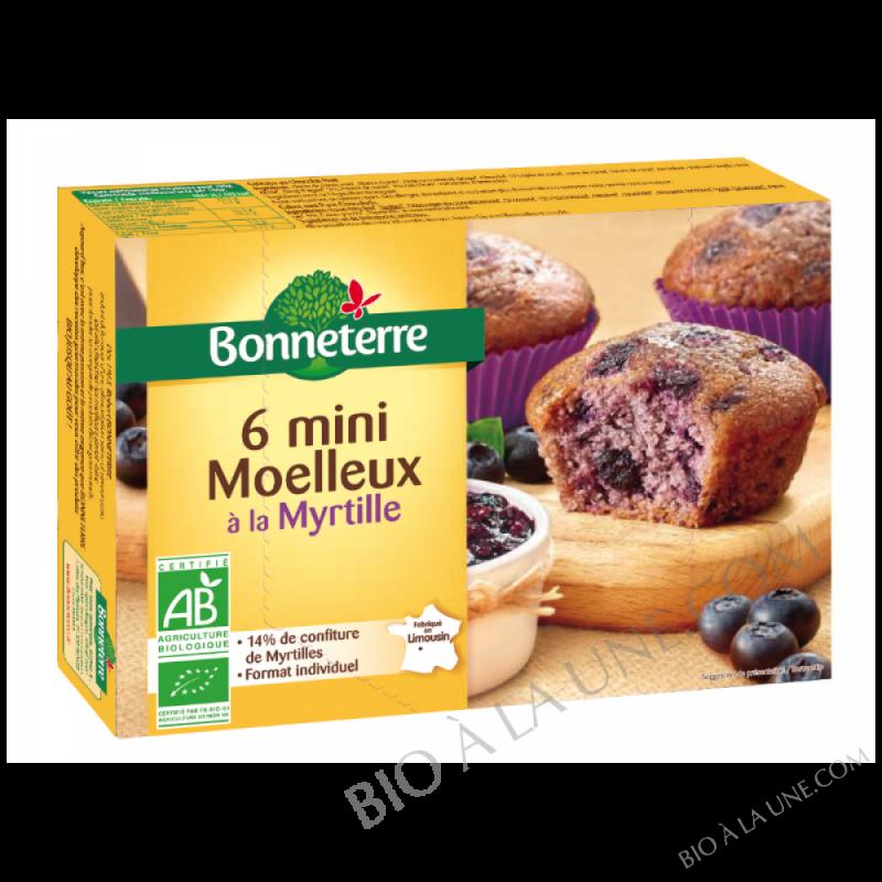 MINI MOELLEUX À LA MYRTILLE - 200G