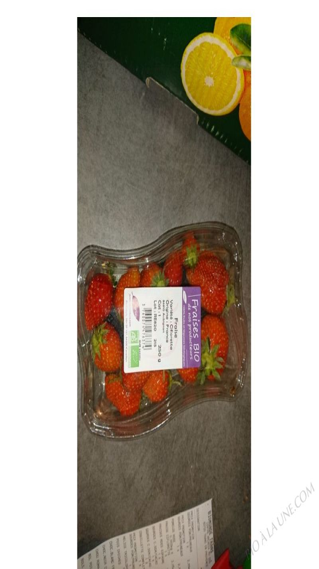 fraises ciflorettes  - 250G