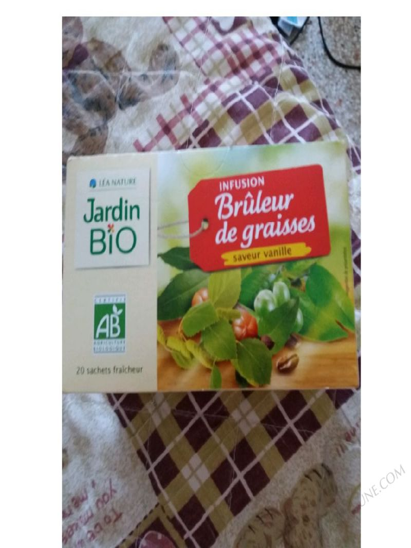 INFUSION BRÛLEUR DE GRAISSES 20 SACHETS