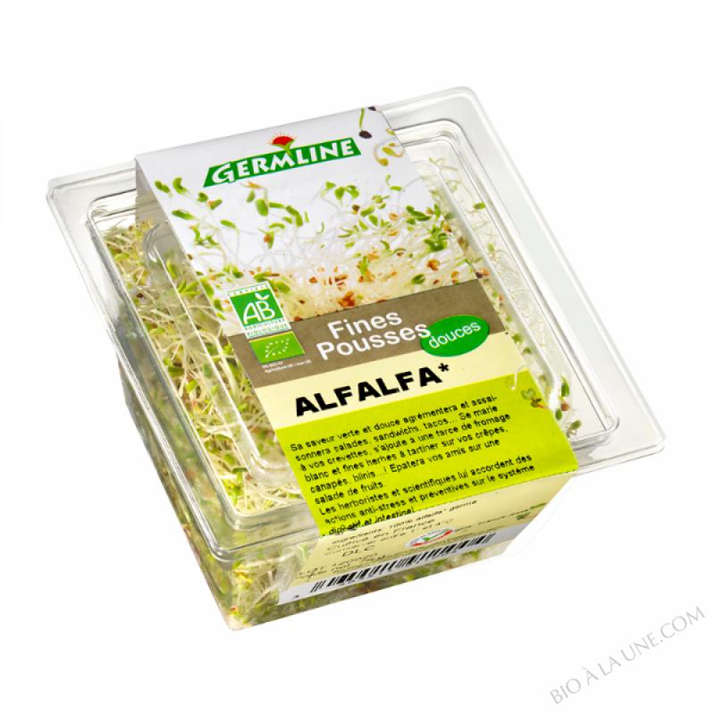 Alfalfa germé 75g