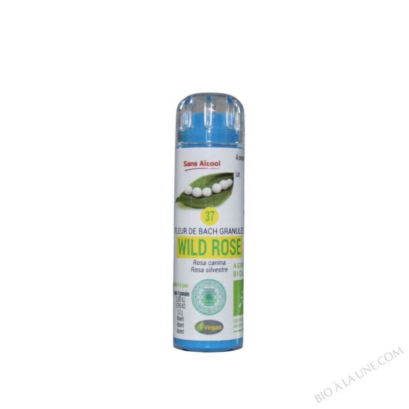 GRANULES BACH N°37 WILD ROSE EUMADIS