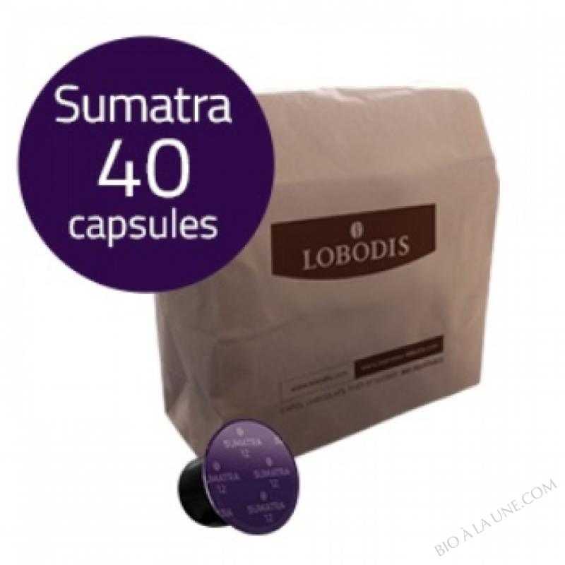 Capsules de café SUMATRA compatibles Nespresso - LOBODIS - 40 CAPSULES