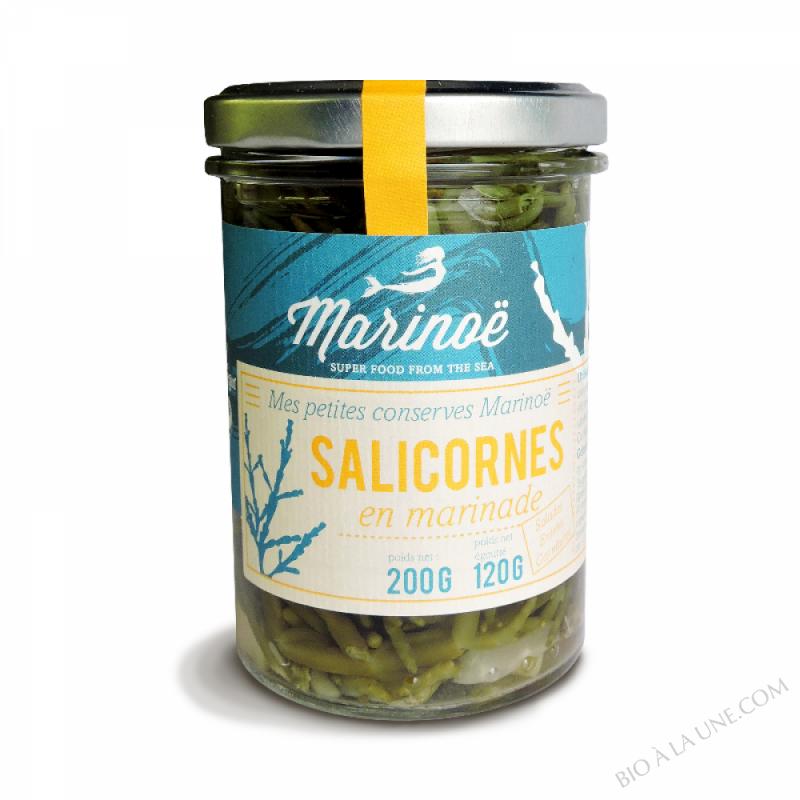 Salicornes en marinade - Marinoë