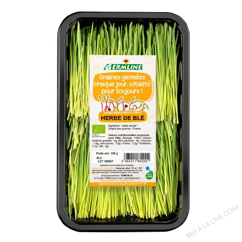 Herbe de blé à jus 100g