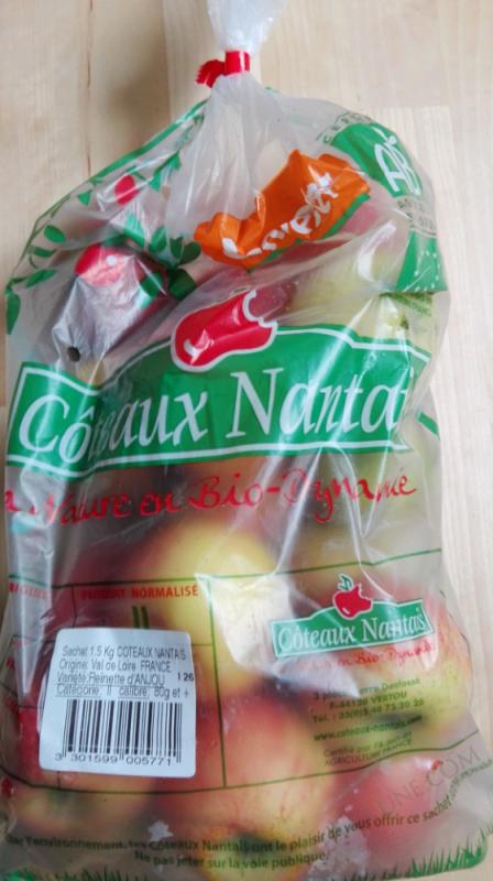 POMME REINETTE COTEAUX NANTAIS - 1.5KG