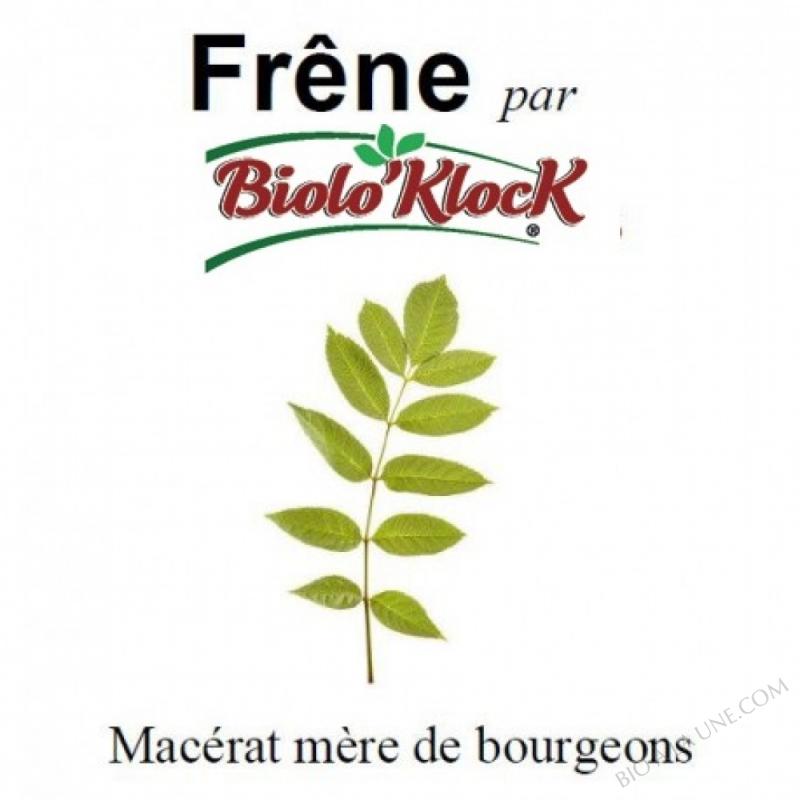 Macérat de bourgeons de Frêne