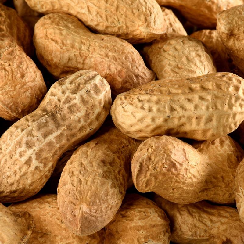 Cacahuètes Coques Bio en vrac