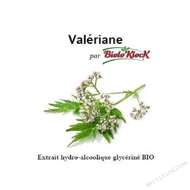 Extrait de Valériane