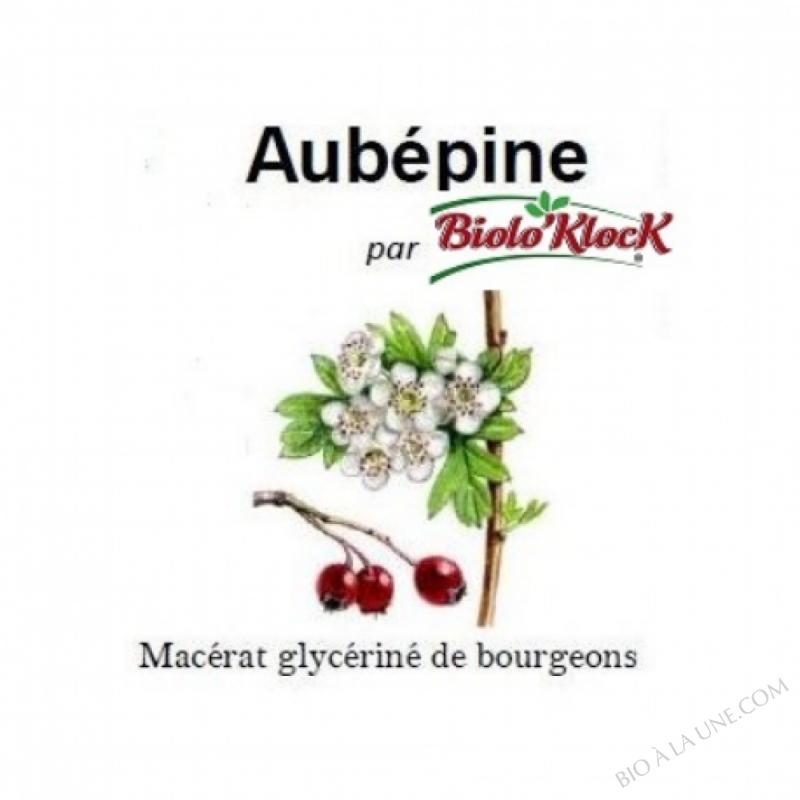 Macérat de bourgeons d\'Aubépine