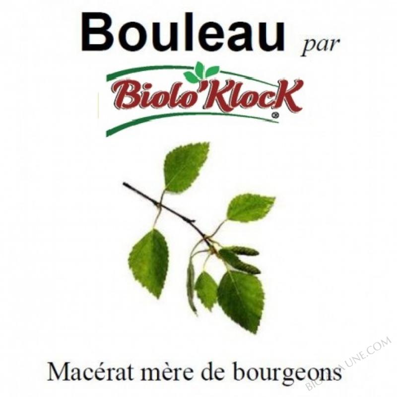 Macérat de bourgeons de Bouleau