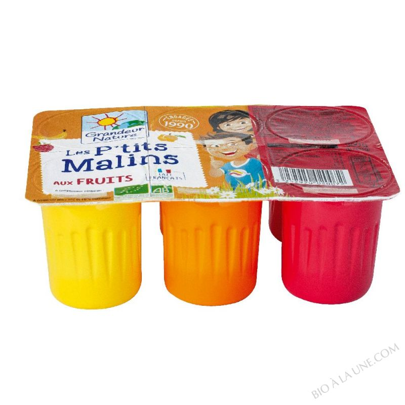 PTITS MALINS AUX FRUITS- 6  60 G