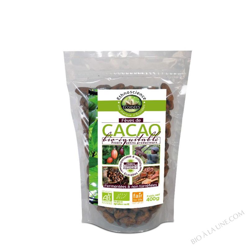 Fèves de cacao crues entières BIO et EQUITABLE - sachet 400g
