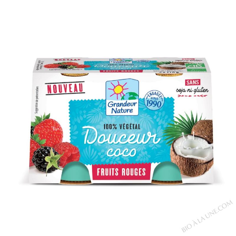 DOUCEUR VEGETALE COCO/FRUITS ROUGES 2X125G