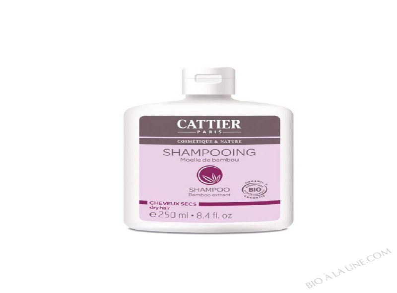 Shampoing-lait Bio Cheveux Secs