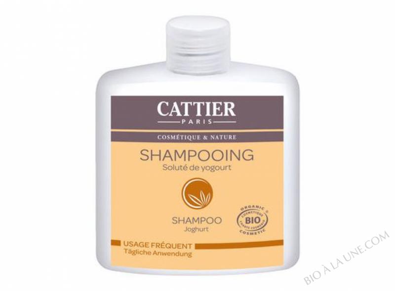 Shampoing bio Usage frequent