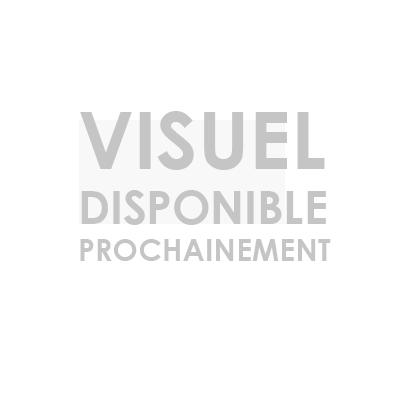 YAOURT BREBIS DEMI-ECREME FRAMBOISE 2 X 125G