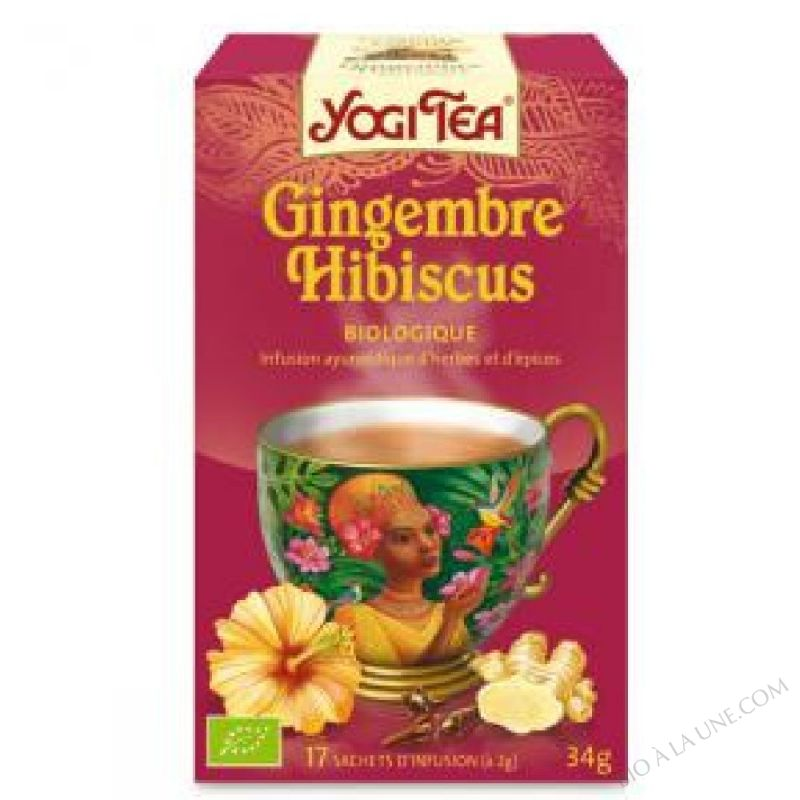 Infusion Exotique Gingembre Hibiscus 15 sachets