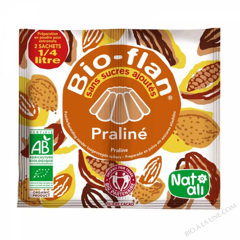 Bioflan Praline sans sucre 10g