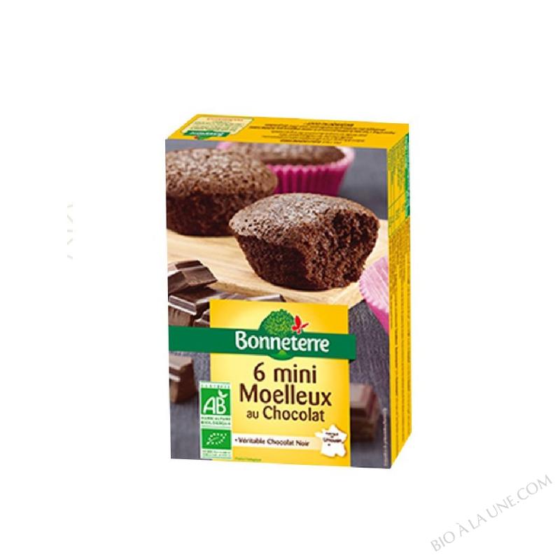 MINI MOELLEUX CHOCO 200G BONNETERRE