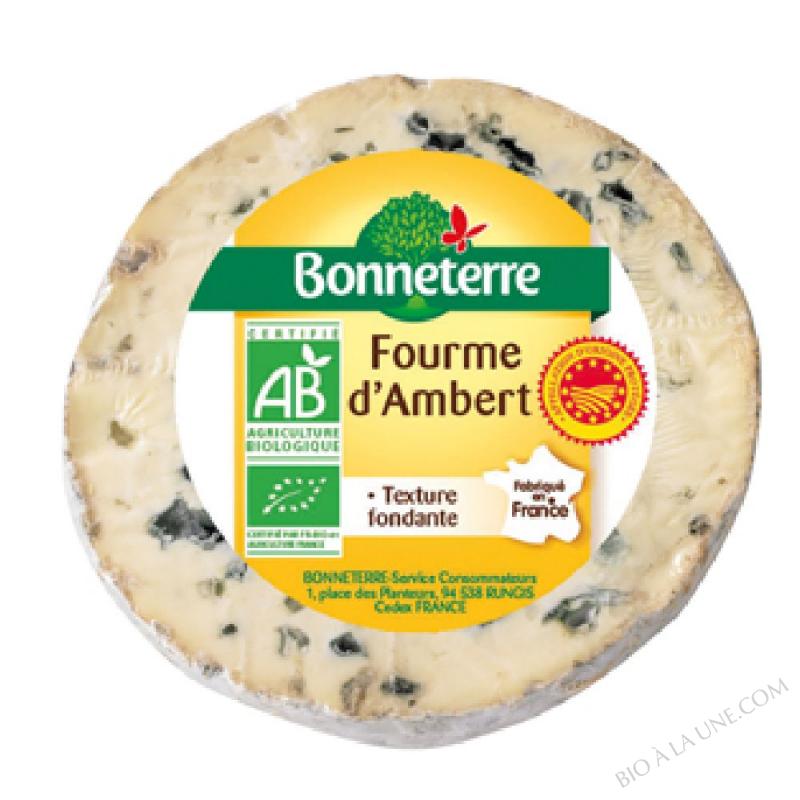 Fourme d'Ambert AOP