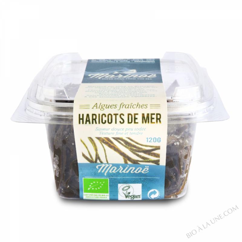 Haricots de mer -algues fraîches- Marinoë