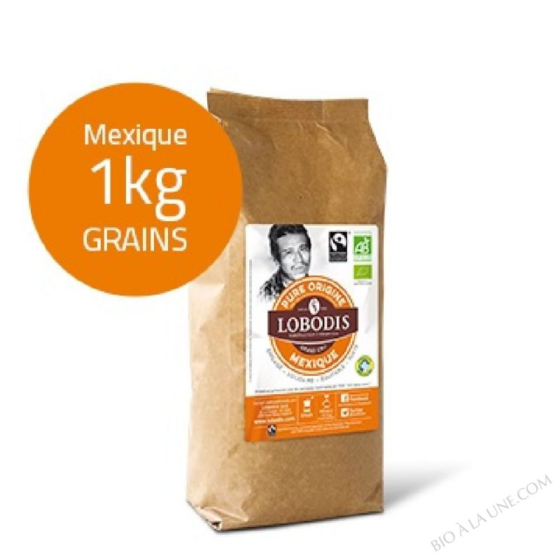 Café Grain MEXIQUE BIO Pure Origine - Lobodis - 1kg