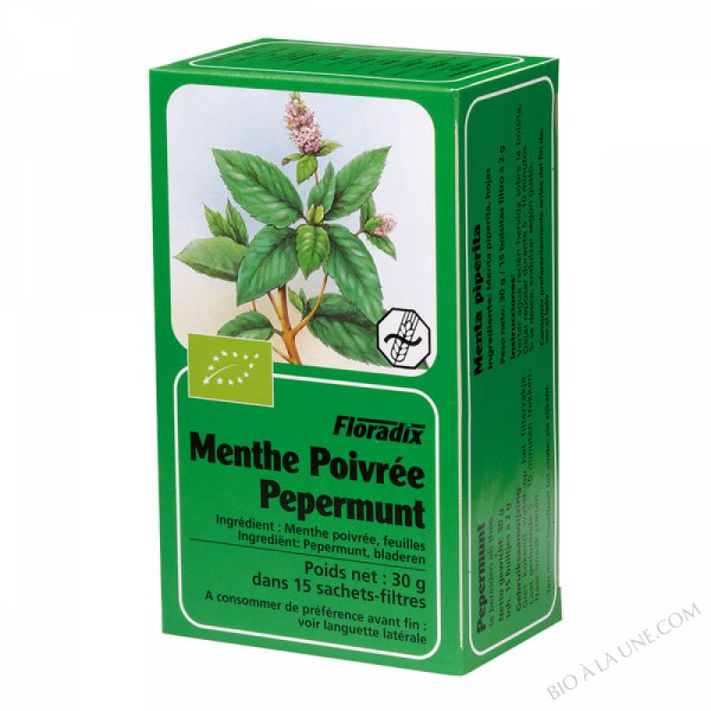 Tisane Floradix Menthe poivree 15 sachets