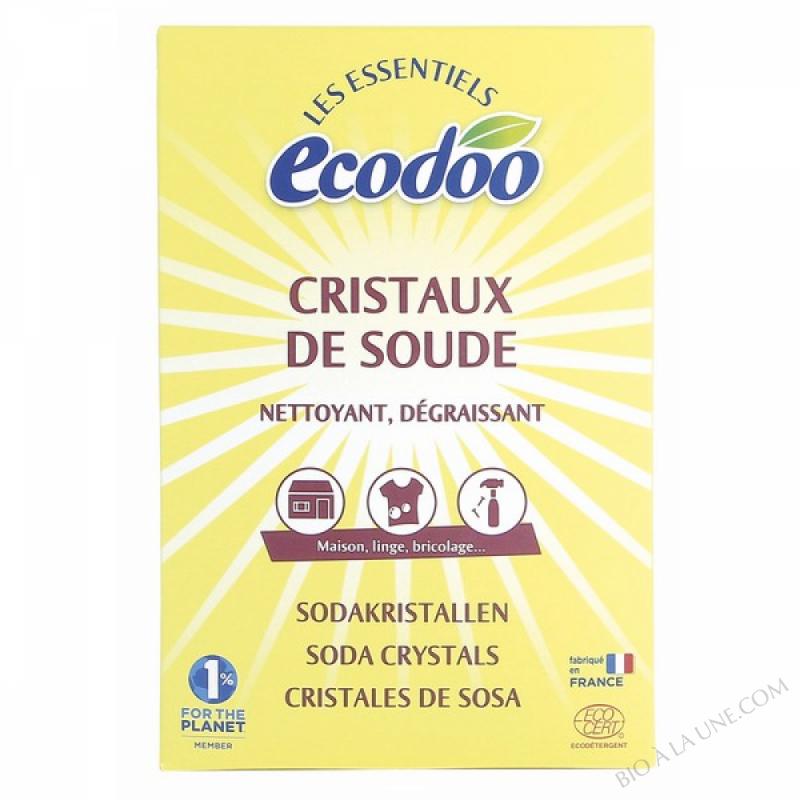 CRISTAUX DE SOUDE 500G