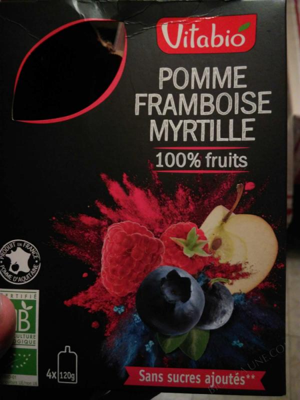 Gourde 100% Fruits Pomme-Framboise-Myrtille - 4x120g