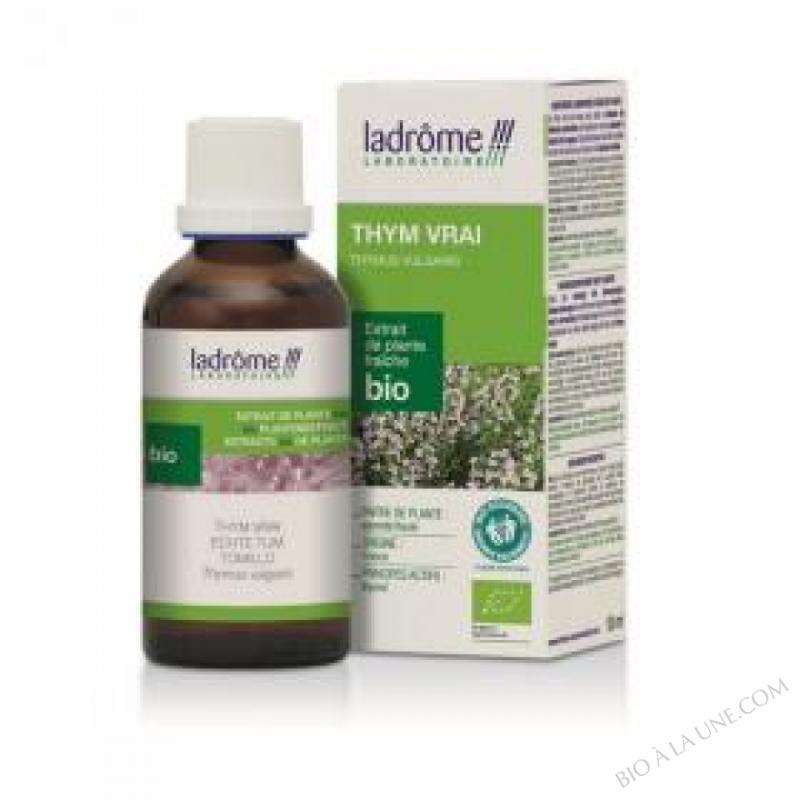 thym thymol - 50 ml