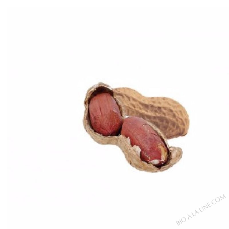 CACAHUETE Toastées au feu de bois, assaisonnées au Shoyou    - SAC 2 kg