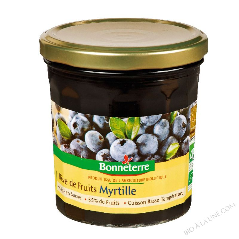REVE DE FRUITS MYRTILLE - 350 G