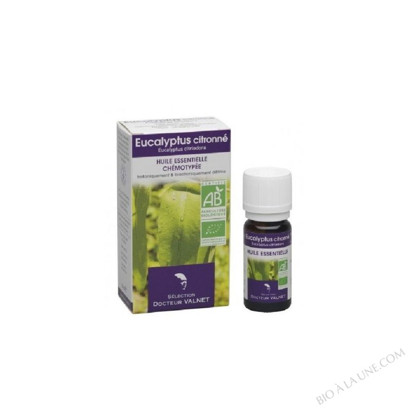 Huile Essentielle Eucalyptus Citronné Bio - 10 ml