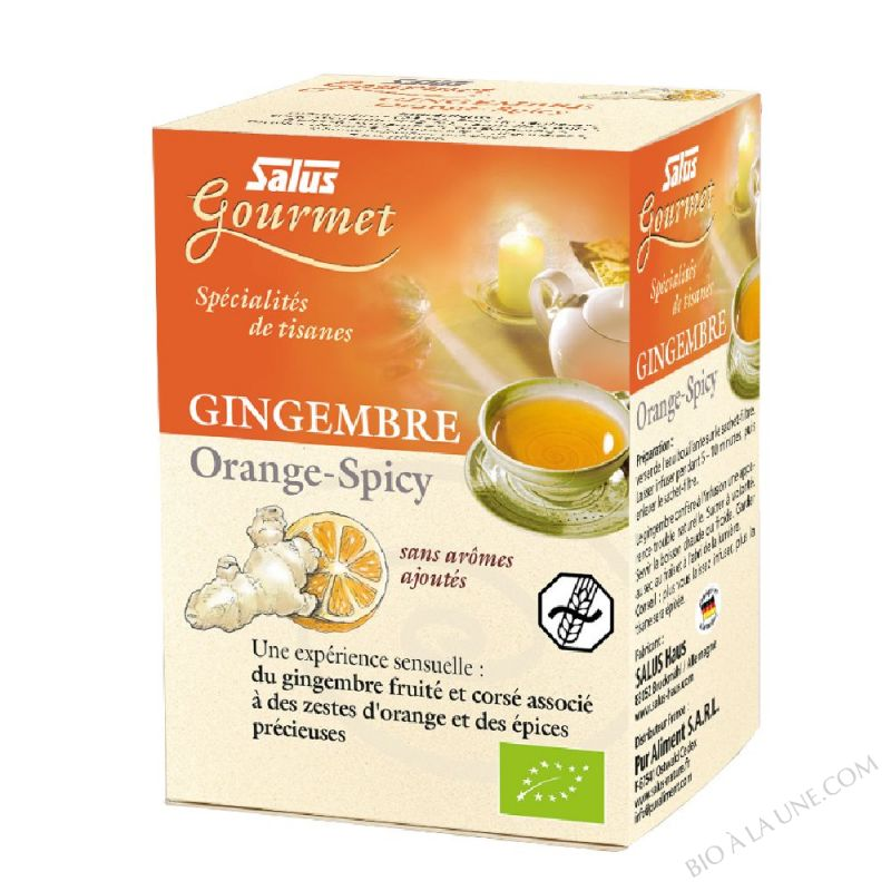 Tisanes Gourmet Gingembre Orange-Spicy - 15 sachets