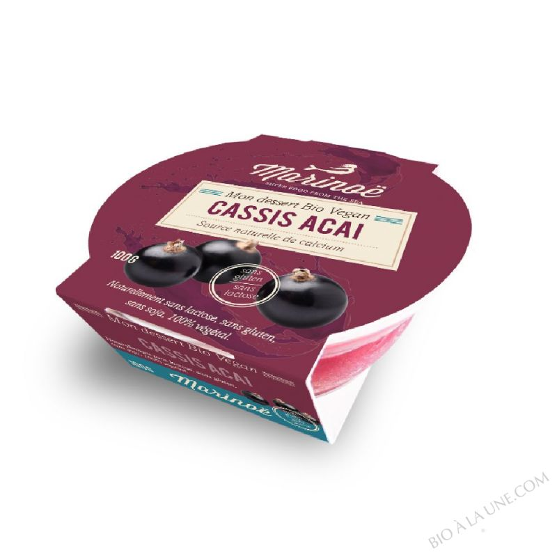 Dessert 100% végétal Cassis Açaì - Marinoë