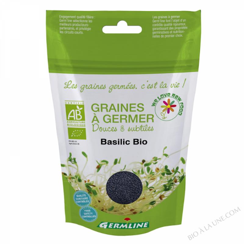 Basilic à germer 100g