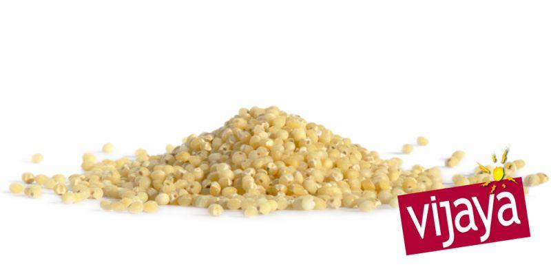 Graine de Millet VIJAYA - Bio