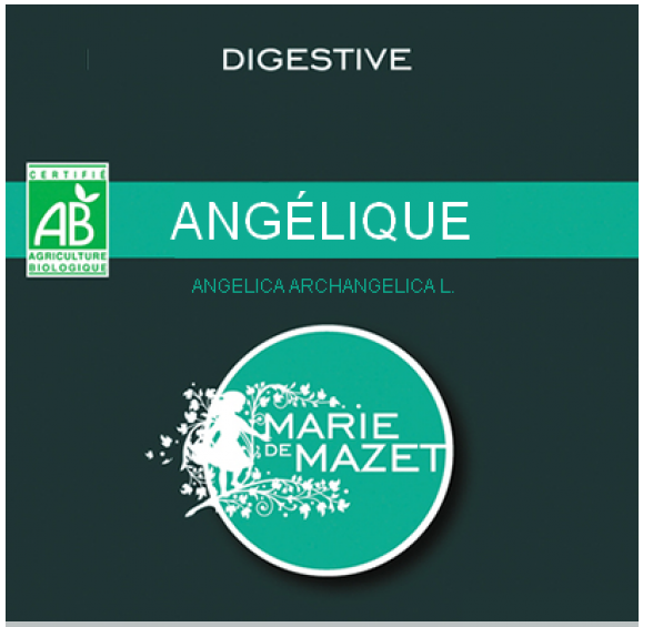 Tisane angelique (digestive)