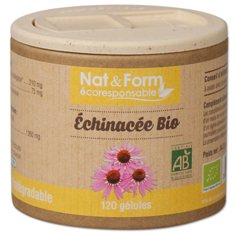 Echinacée Bio