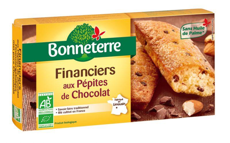 Bonneterre financier bio aux pépites de chocolat