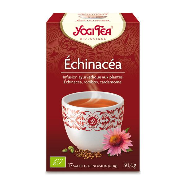 Infusion Echinacéa